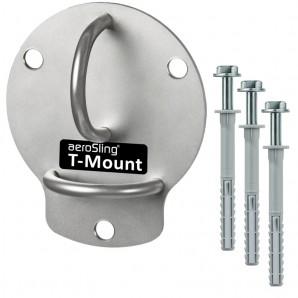 1T_Mount_1