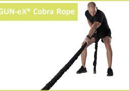 Gun-Ex Cobra